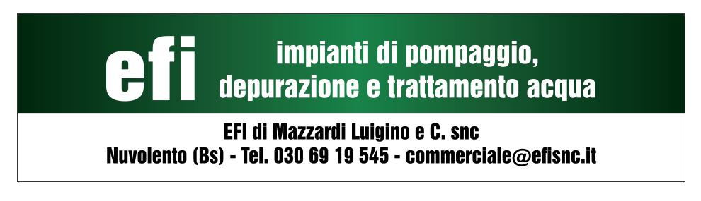 e.f.i. di Mazzardi Luigino & C. Snc