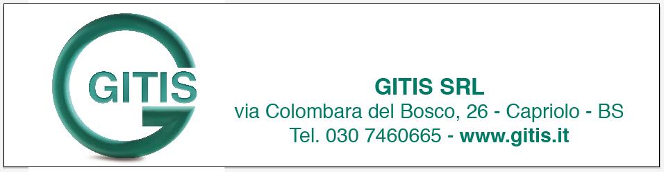 GITIS S.R.L.